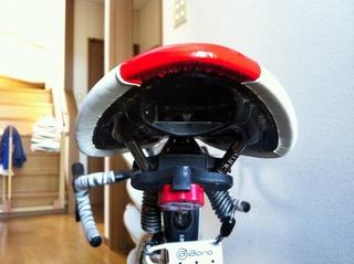 20110916フィジークバックライト 006.jpg